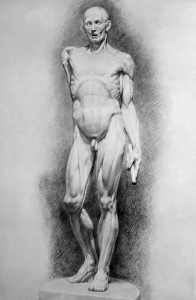 Drawing In The High Art School book - pencil man ecorche 02