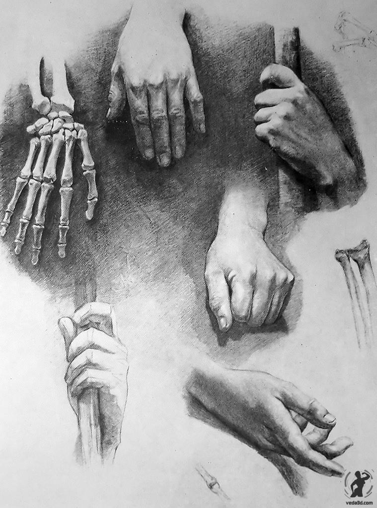 безукоризненные рисунок рука в руке карандашом фото всего вышеперечисленного
