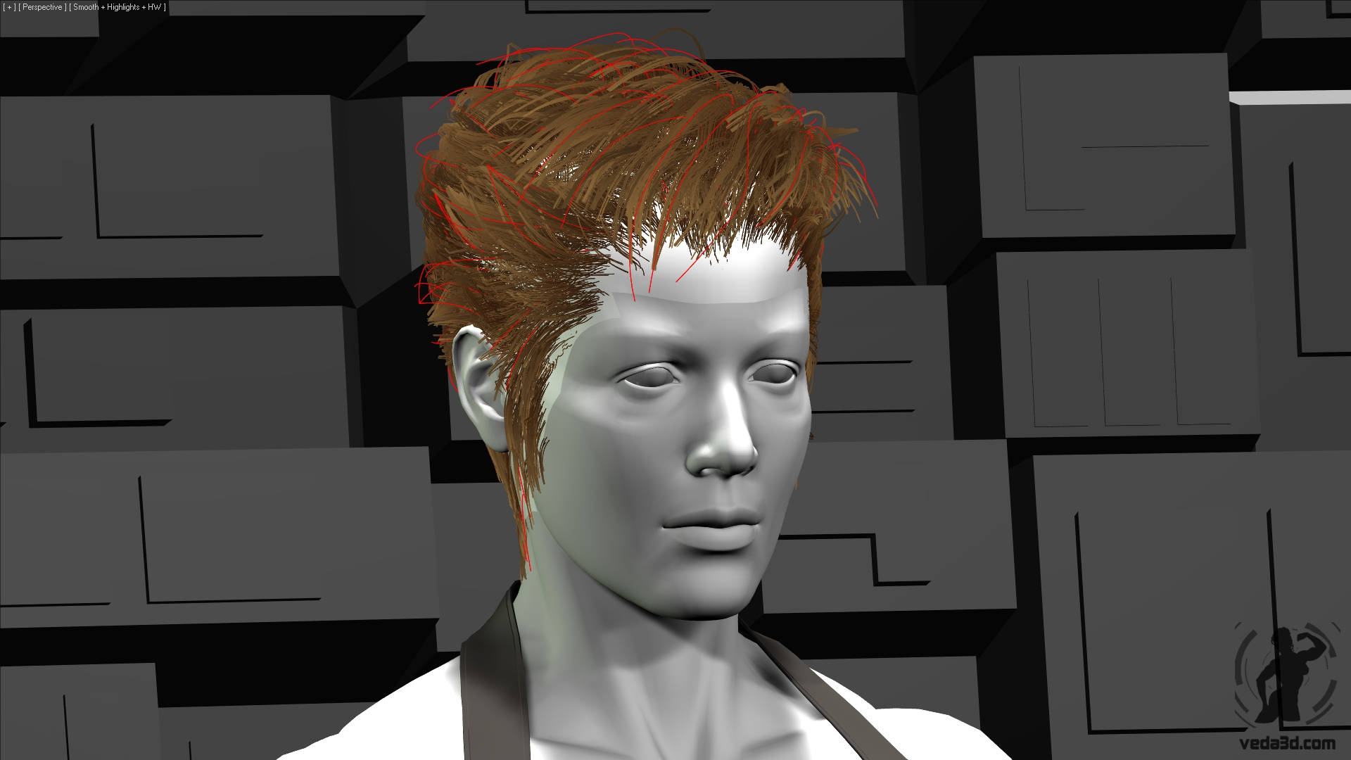 Veda 3d hair - 3ds max's Hair and Fur - Recomb From Splines
