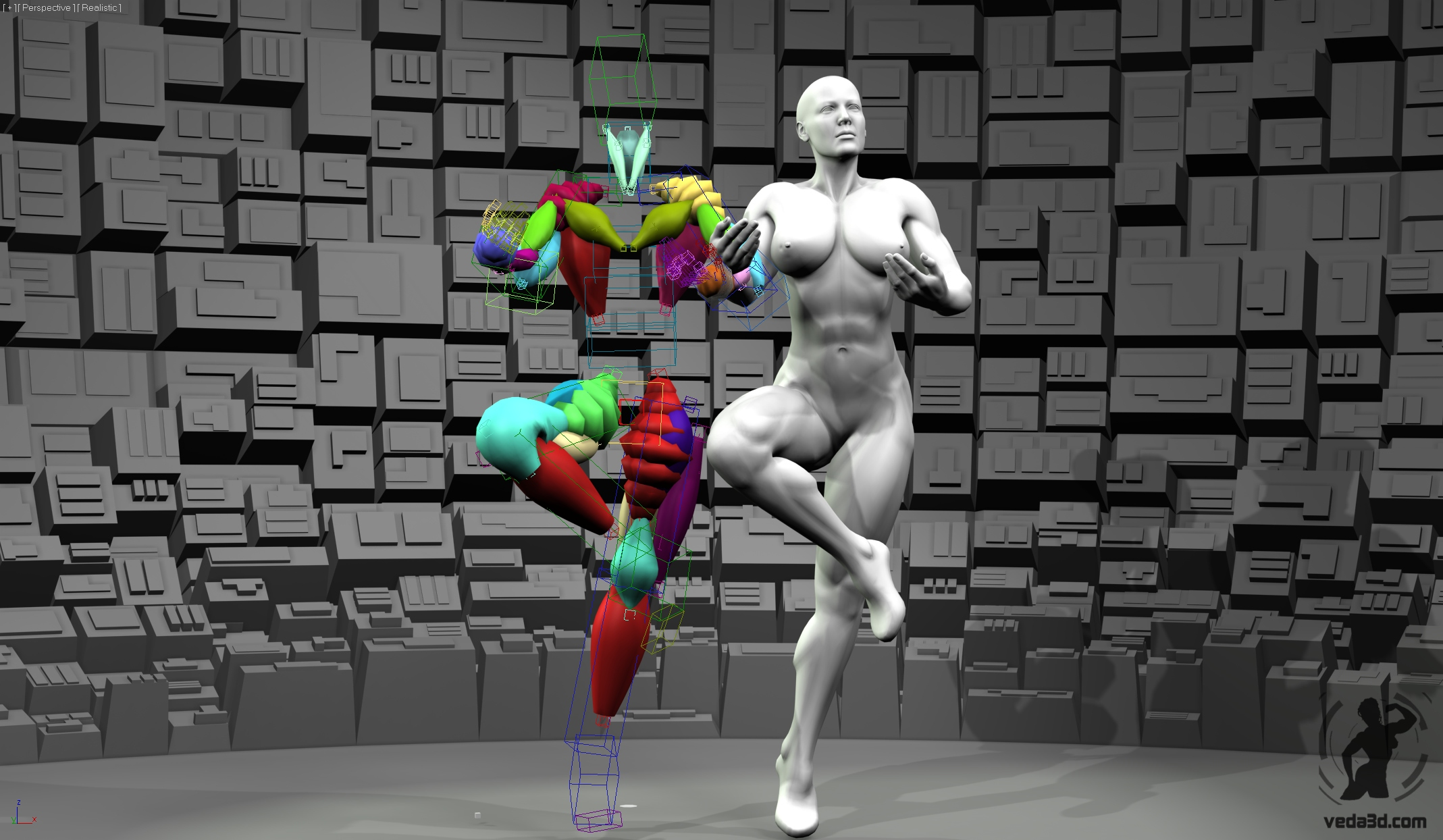 Screenshot of Veda muscles rig 03