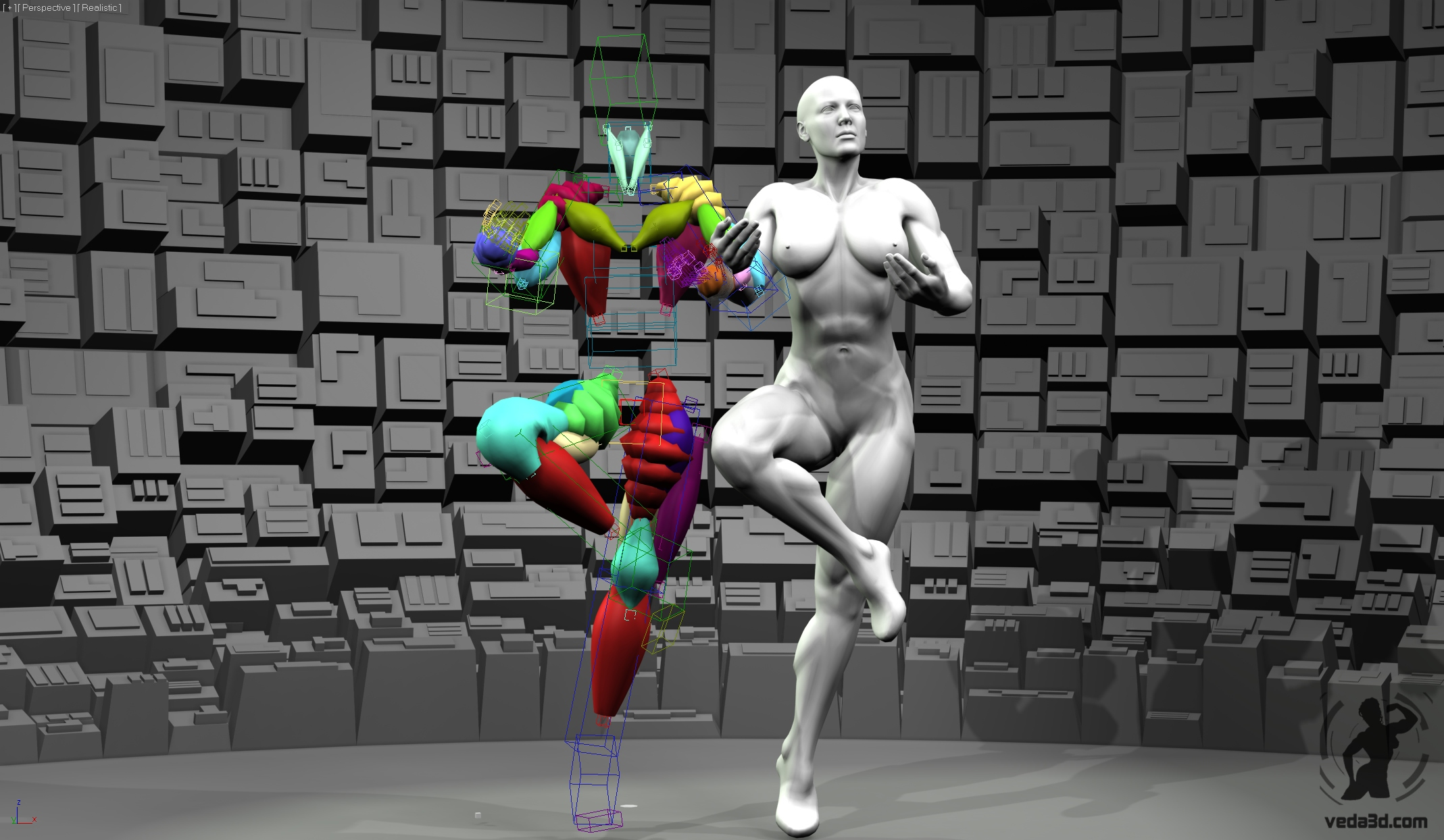 Screenshot of Veda muscles rig 02