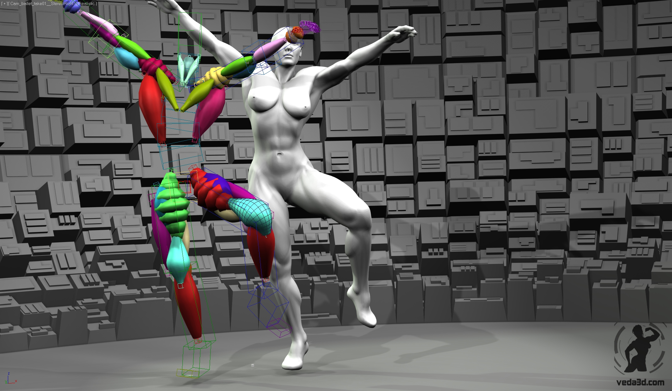 Screenshot of Veda muscles rig 01